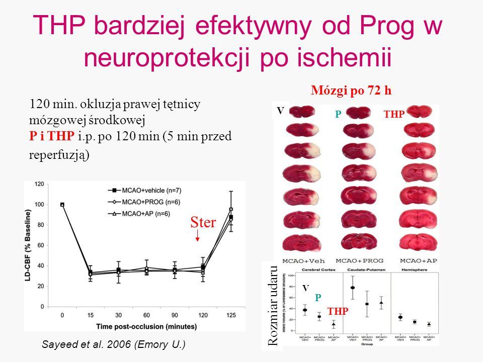 THP bardziej efektywny od Prog w neuroprotekcji po ischemii Sayeed et al. 2006 (Emory U.) Rozmiar udaru THP P 120 min. okluzja prawej tętnicy mózgowej