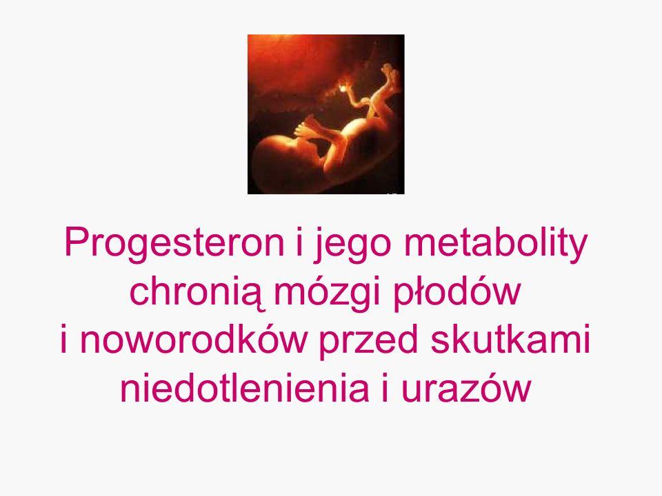 Progesteron i jego metabolity chronią mózgi płodów i noworodków przed skutkami niedotlenienia i urazów