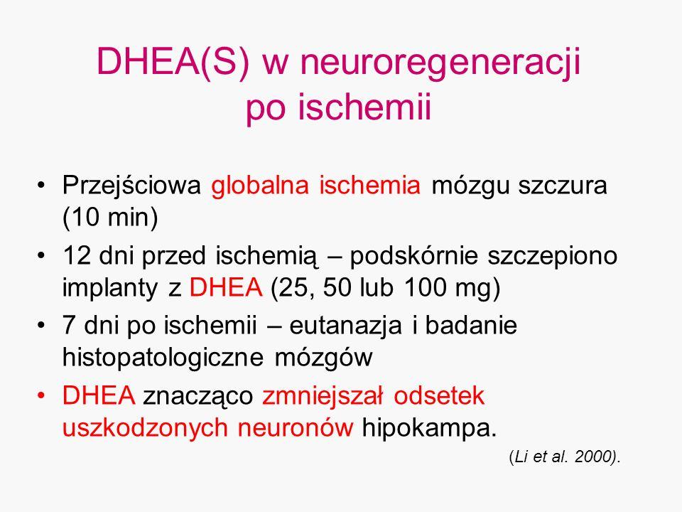 DHEA(S) w neuroregeneracji po ischemii Przejściowa globalna ischemia mózgu szczura (10 min) 12 dni przed ischemią – podskórnie szczepiono implanty z D