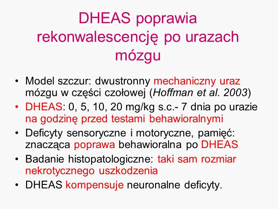 DHEAS poprawia rekonwalescencję po urazach mózgu Model szczur: dwustronny mechaniczny uraz mózgu w części czołowej (Hoffman et al. 2003) DHEAS: 0, 5,