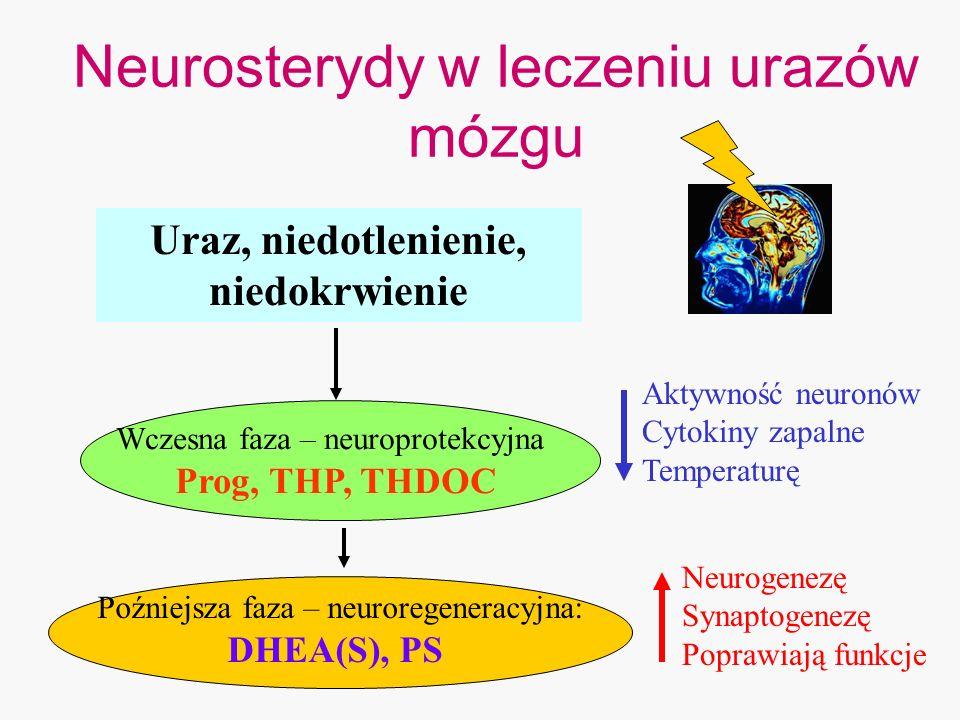 Uraz, niedotlenienie, niedokrwienie Wczesna faza – neuroprotekcyjna Prog, THP, THDOC Poźniejsza faza – neuroregeneracyjna: DHEA(S), PS Aktywność neuro