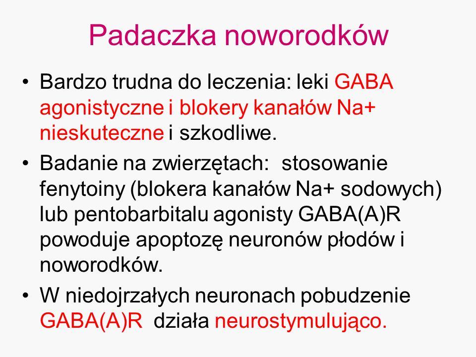 Padaczka noworodków Bardzo trudna do leczenia: leki GABA agonistyczne i blokery kanałów Na+ nieskuteczne i szkodliwe. Badanie na zwierzętach: stosowan