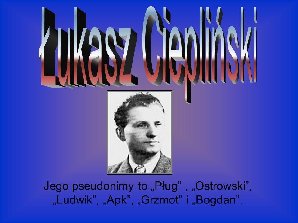 Jego pseudonimy to Pług, Ostrowski, Ludwik, Apk, Grzmot i Bogdan.