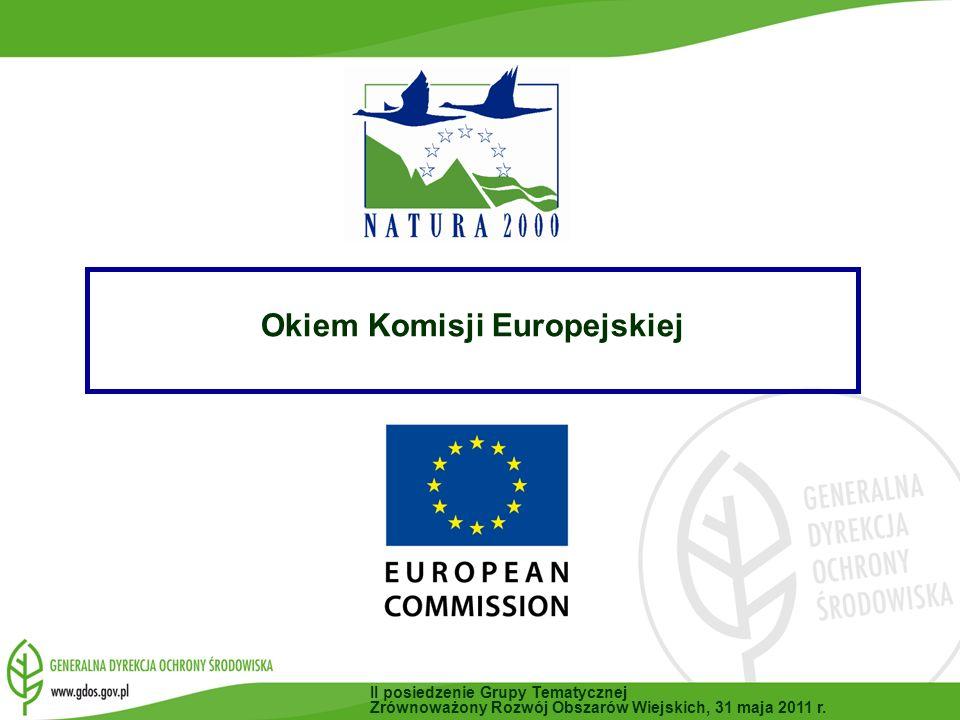 Stan wdrażania w skali Unii Europejskiej II posiedzenie Grupy Tematycznej Zrównoważony Rozwój Obszarów Wiejskich, 31 maja 2011 r.