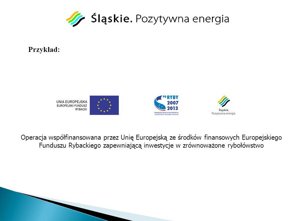 Operacja współfinansowana przez Unię Europejską ze środków finansowych Europejskiego Funduszu Rybackiego zapewniającą inwestycje w zrównoważone rybołó