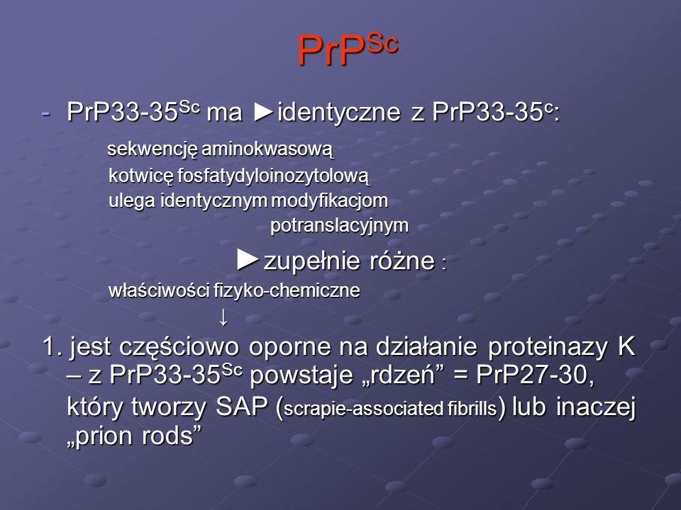 PrP Sc PrP Sc -PrP33-35 Sc ma identyczne z PrP33-35 c : sekwencję aminokwasową sekwencję aminokwasową kotwicę fosfatydyloinozytolową kotwicę fosfatydy
