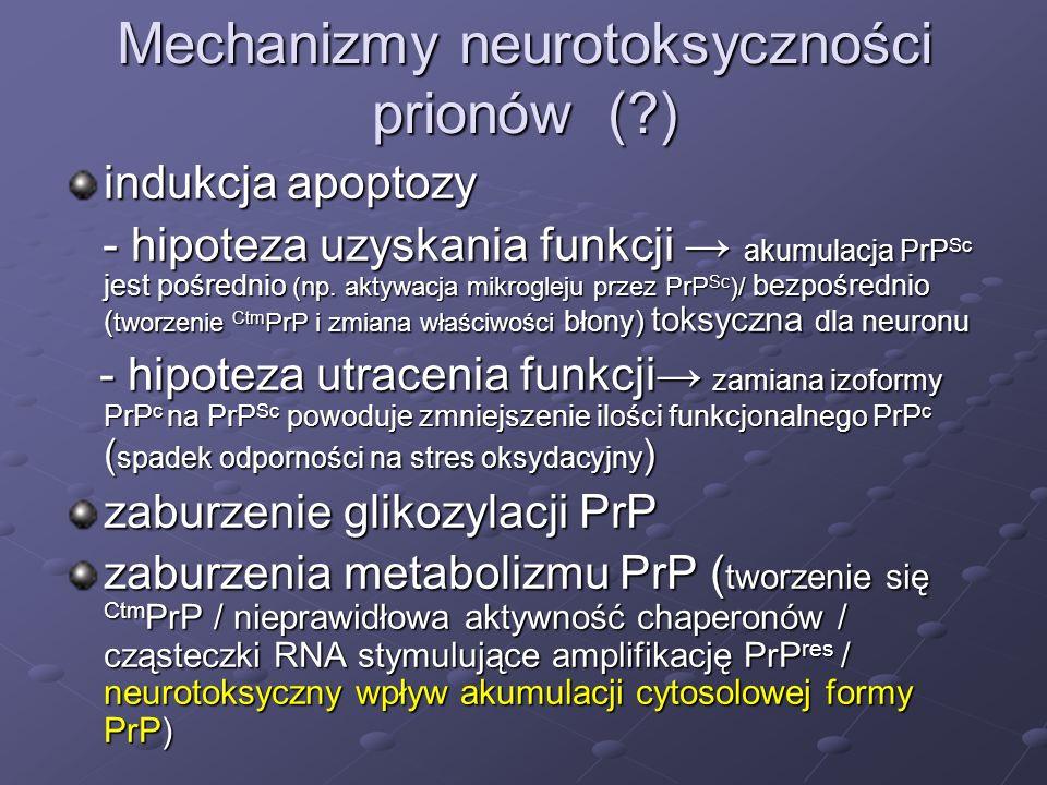 Mechanizmy neurotoksyczności prionów (?) indukcja apoptozy - hipoteza uzyskania funkcji akumulacja PrP Sc jest pośrednio (np. aktywacja mikrogleju prz