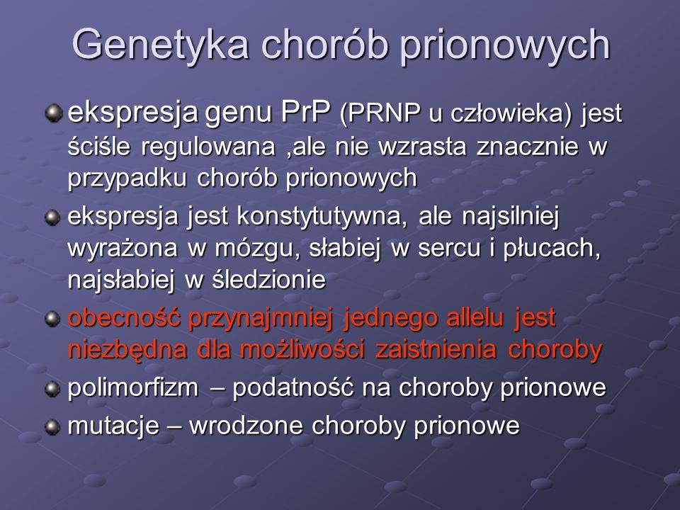 Genetyka chorób prionowych ekspresja genu PrP (PRNP u człowieka) jest ściśle regulowana,ale nie wzrasta znacznie w przypadku chorób prionowych ekspres