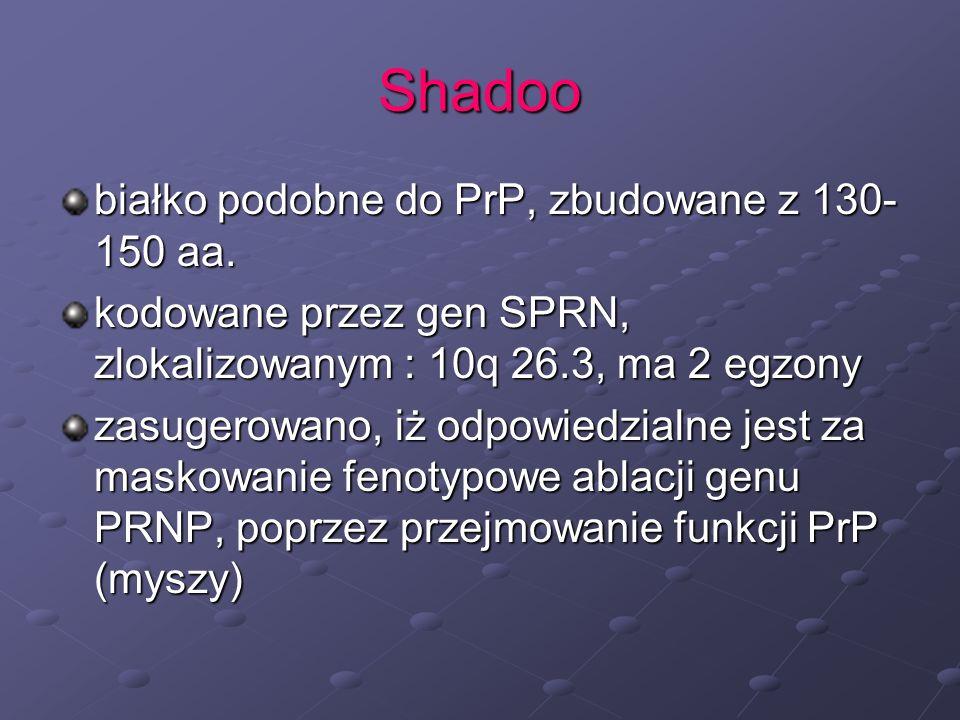 Shadoo białko podobne do PrP, zbudowane z 130- 150 aa. kodowane przez gen SPRN, zlokalizowanym : 10q 26.3, ma 2 egzony zasugerowano, iż odpowiedzialne
