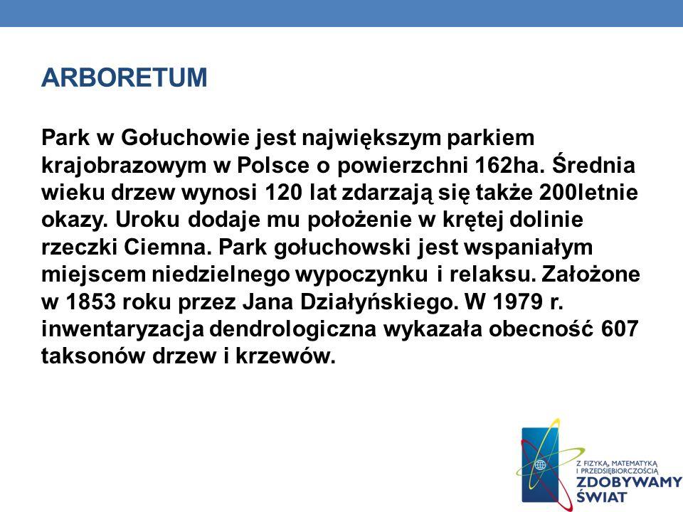ARBORETUM Park w Gołuchowie jest największym parkiem krajobrazowym w Polsce o powierzchni 162ha. Średnia wieku drzew wynosi 120 lat zdarzają się także