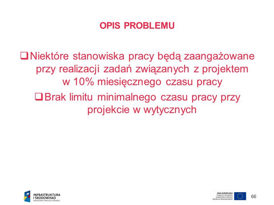66 OPIS PROBLEMU Niektóre stanowiska pracy będą zaangażowane przy realizacji zadań związanych z projektem w 10% miesięcznego czasu pracy Brak limitu m