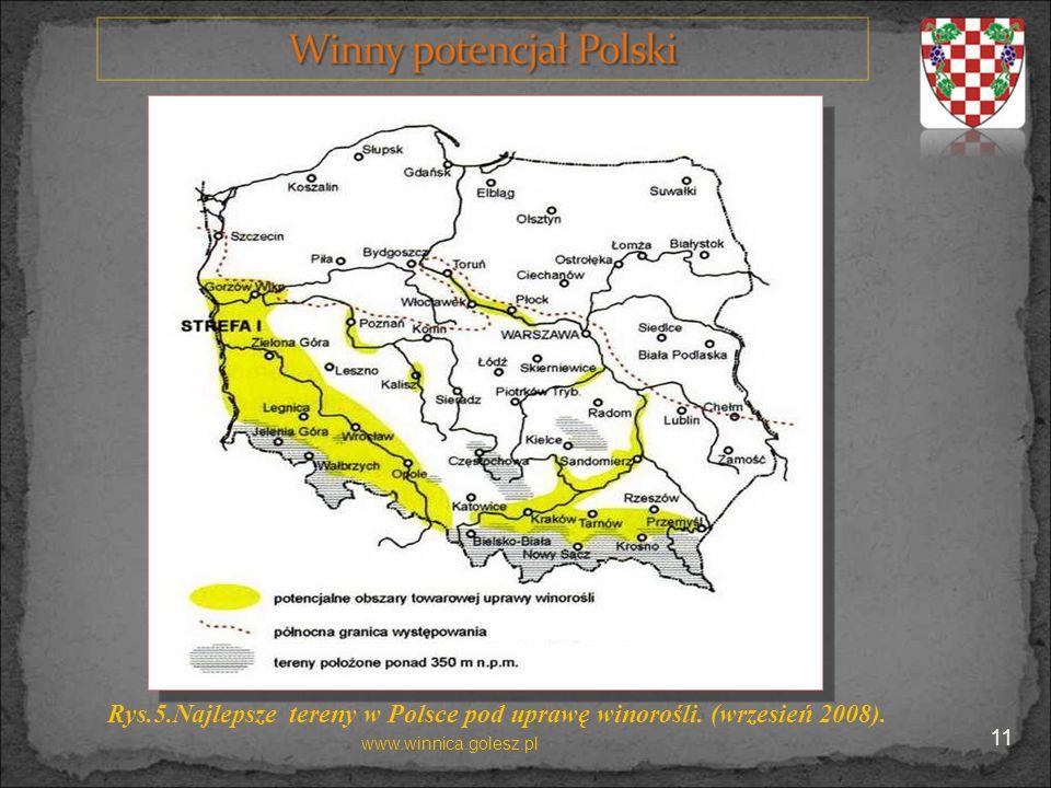 Rys.5.Najlepsze tereny w Polsce pod uprawę winorośli. (wrzesień 2008). www.winnica.golesz.pl 11