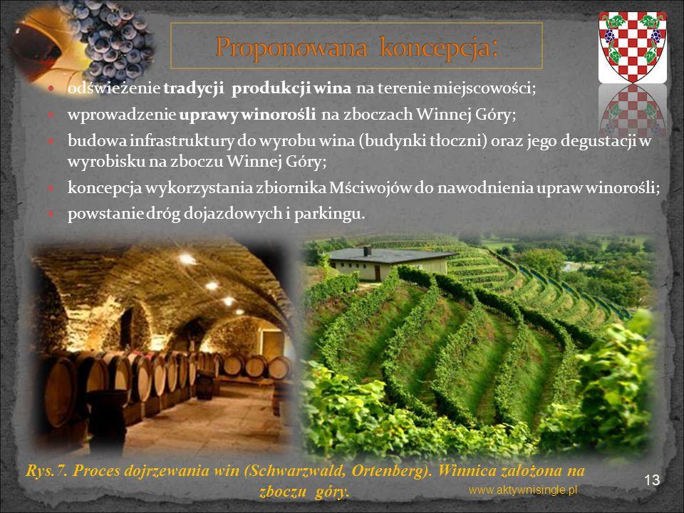 odświeżenie tradycji produkcji wina na terenie miejscowości; wprowadzenie uprawy winorośli na zboczach Winnej Góry; budowa infrastruktury do wyrobu wi