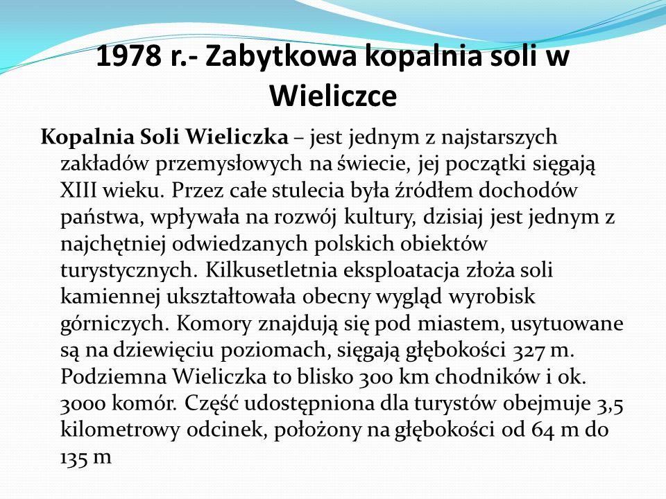 Szyb Daniłowicza – wejście do kopalni