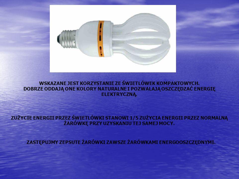 WSKAZANE JEST KORZYSTANIE ZE ŚWIETLÓWEK KOMPAKTOWYCH. DOBRZE ODDAJĄ ONE KOLORY NATURALNE I POZWALAJĄ OSZCZĘDZAĆ ENERGIĘ ELEKTRYCZNĄ. ZUŻYCIE ENERGII P