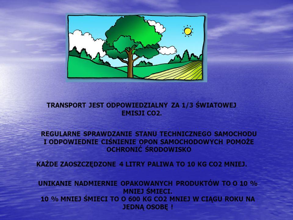 TRANSPORT JEST ODPOWIEDZIALNY ZA 1/3 ŚWIATOWEJ EMISJI CO2. UNIKANIE NADMIERNIE OPAKOWANYCH PRODUKTÓW TO O 10 % MNIEJ ŚMIECI. 10 % MNIEJ ŚMIECI TO O 60