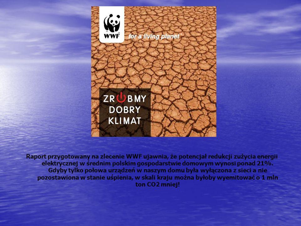 Raport przygotowany na zlecenie WWF ujawnia, że potencjał redukcji zużycia energii elektrycznej w średnim polskim gospodarstwie domowym wynosi ponad 2