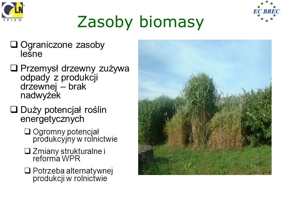 Zasoby biomasy Ograniczone zasoby leśne Przemysł drzewny zużywa odpady z produkcji drzewnej – brak nadwyżek Duży potencjał roślin energetycznych Ogrom