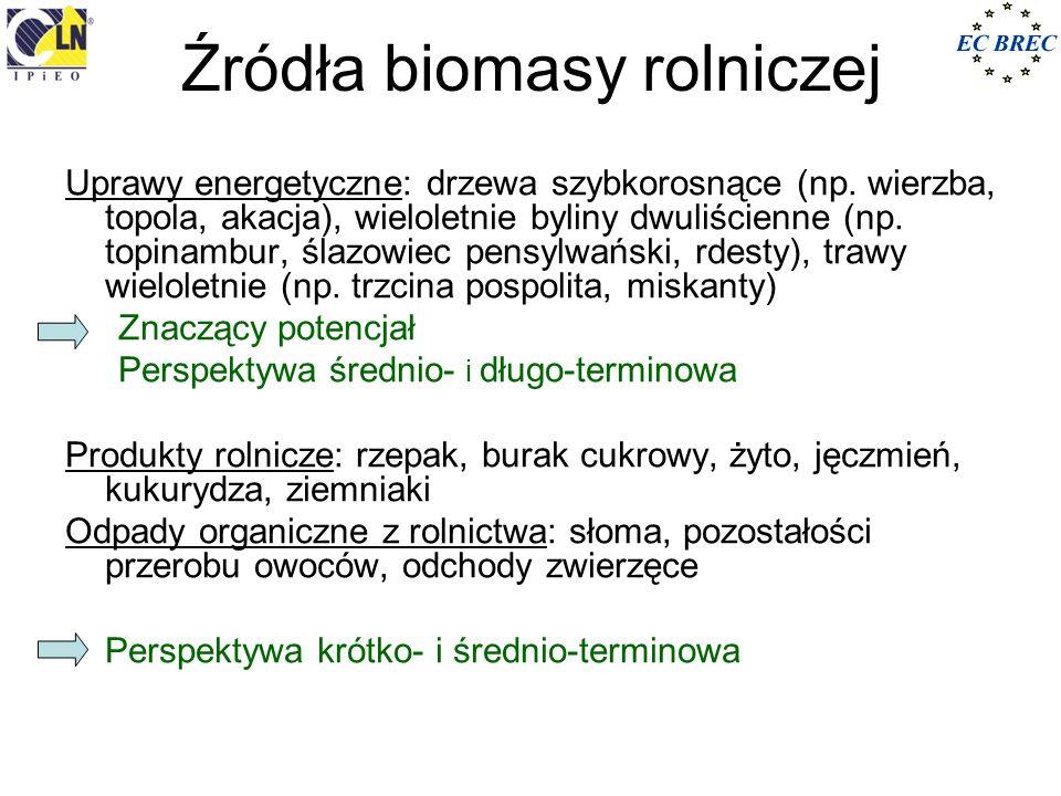 Źródła biomasy rolniczej Uprawy energetyczne: drzewa szybkorosnące (np. wierzba, topola, akacja), wieloletnie byliny dwuliścienne (np. topinambur, śla