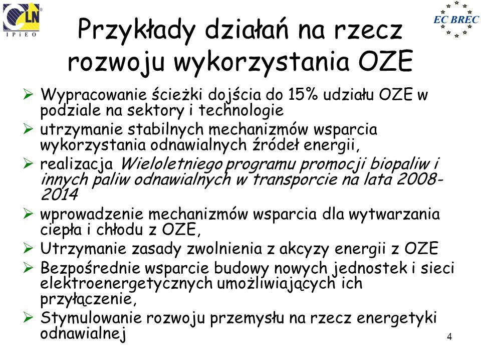 Poznań, 18 maja 2010 r.5 Struktura produkcji z OZE Źródło: Główny Urząd Statystyczny Struktura produkcji energii z OZE, 2008 r.