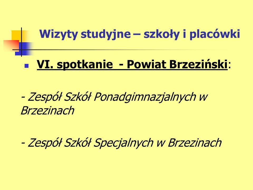 Wizyty studyjne – szkoły i placówki VI.