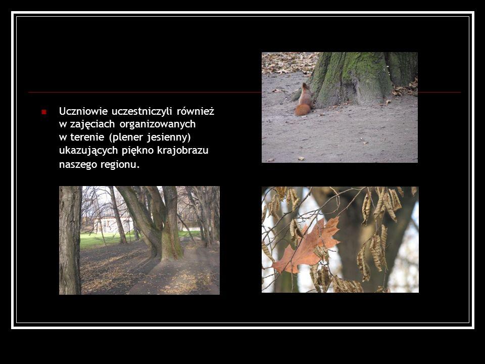 Uczniowie uczestniczyli również w zajęciach organizowanych w terenie (plener jesienny) ukazujących piękno krajobrazu naszego regionu.