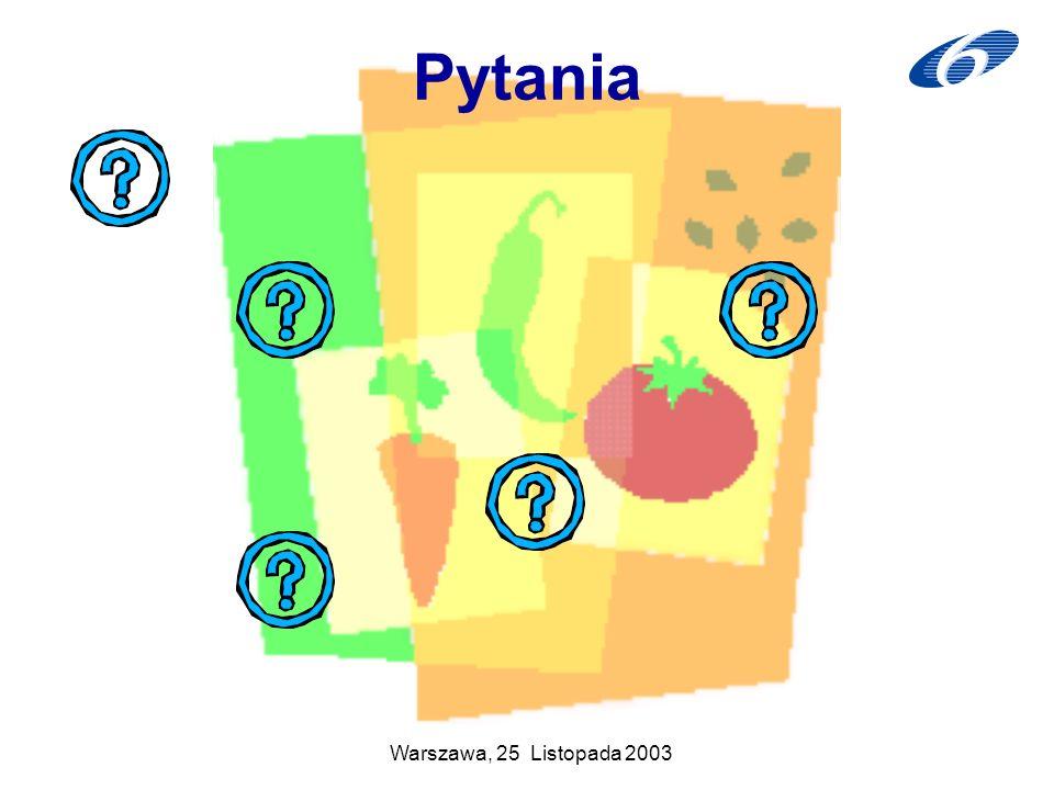 Warszawa, 25 Listopada 2003 Pytania