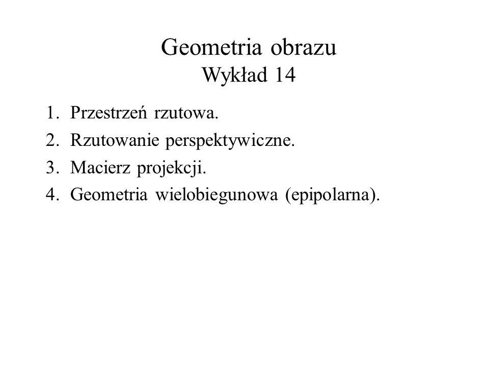 Geometria obrazu Wykład 14 1.Przestrzeń rzutowa. 2.Rzutowanie perspektywiczne. 3.Macierz projekcji. 4.Geometria wielobiegunowa (epipolarna).