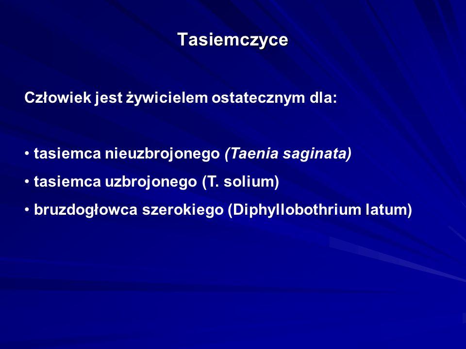 Tasiemczyce Człowiek jest żywicielem ostatecznym dla: tasiemca nieuzbrojonego (Taenia saginata) tasiemca uzbrojonego (T. solium) bruzdogłowca szerokie