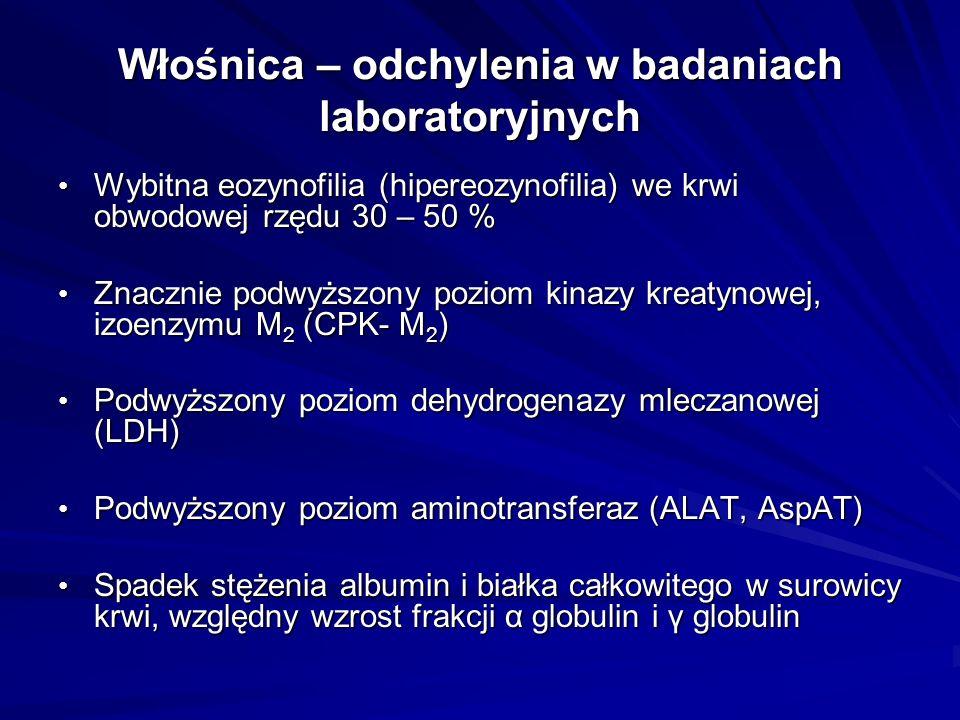 Włośnica – diagnostyka Biopsja mięśnia (naramiennego, brzuchatego łydki, czworogłowego); świeży wycinek (skrawek) mięśnia umieszczamy w kompresorze i oglądamy pod mikroskopem w pracowni parazytologicznej– znalezienie włośni w preparacie bezpośrednim Biopsja mięśnia (naramiennego, brzuchatego łydki, czworogłowego); świeży wycinek (skrawek) mięśnia umieszczamy w kompresorze i oglądamy pod mikroskopem w pracowni parazytologicznej– znalezienie włośni w preparacie bezpośrednim Preparat nadtrawiony Preparat nadtrawiony Charakterystyczny obraz histopatologiczny mięśnia po utrwaleniu Charakterystyczny obraz histopatologiczny mięśnia po utrwaleniu 1.