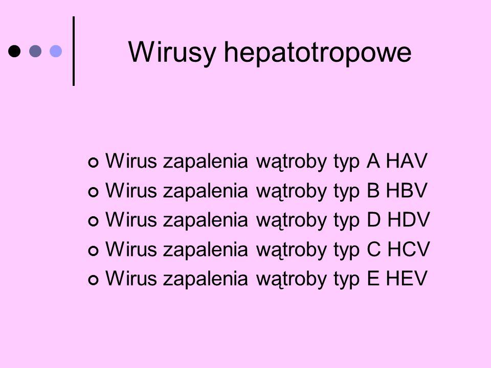 Wirus zapalenia wątroby typ A HAV Wirus zapalenia wątroby typ B HBV Wirus zapalenia wątroby typ D HDV Wirus zapalenia wątroby typ C HCV Wirus zapaleni