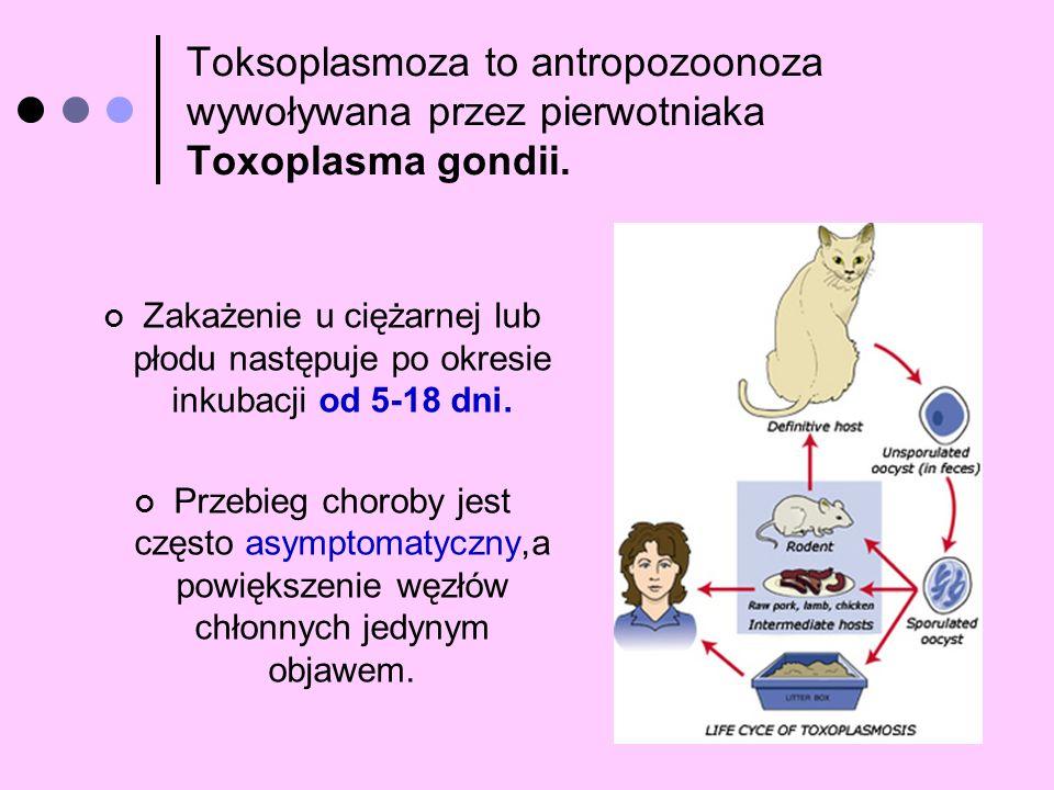 Toksoplasmoza to antropozoonoza wywoływana przez pierwotniaka Toxoplasma gondii. Zakażenie u ciężarnej lub płodu następuje po okresie inkubacji od 5-1
