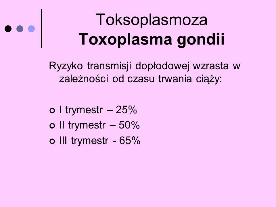 Toksoplasmoza Toxoplasma gondii Ryzyko transmisji dopłodowej wzrasta w zależności od czasu trwania ciąży: I trymestr – 25% II trymestr – 50% III tryme