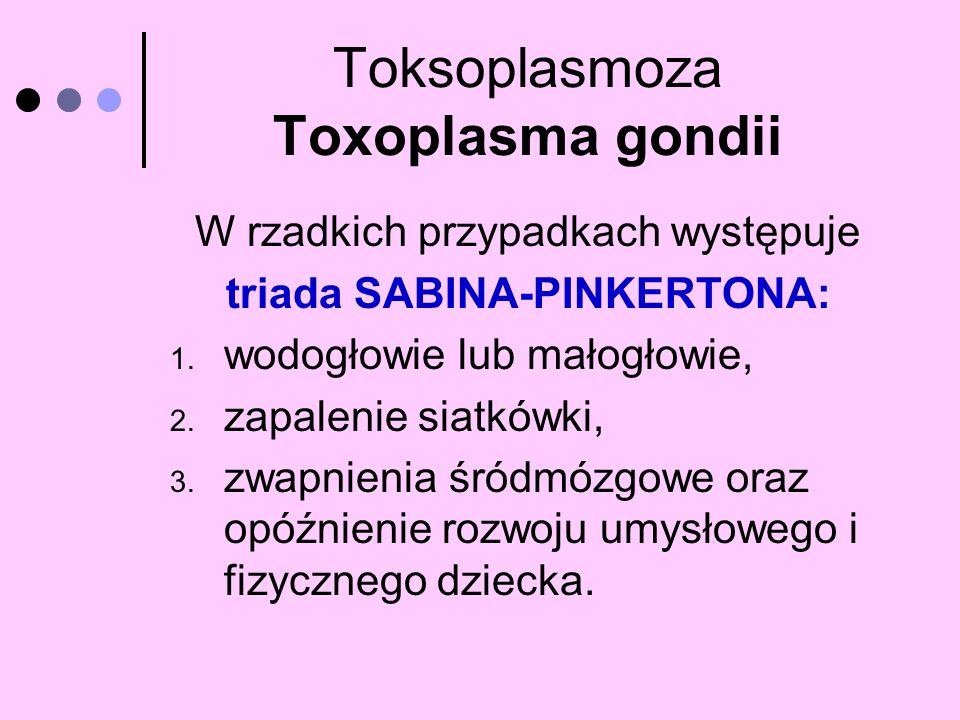 Toksoplasmoza Toxoplasma gondii W rzadkich przypadkach występuje triada SABINA-PINKERTONA: 1. wodogłowie lub małogłowie, 2. zapalenie siatkówki, 3. zw
