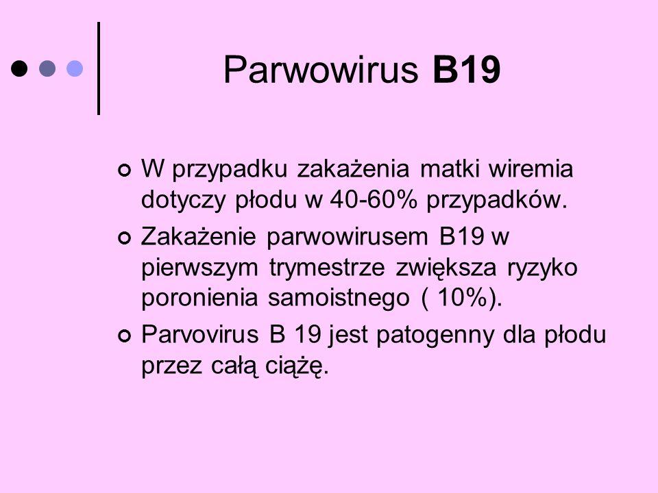 Parwowirus B19 W przypadku zakażenia matki wiremia dotyczy płodu w 40-60% przypadków. Zakażenie parwowirusem B19 w pierwszym trymestrze zwiększa ryzyk