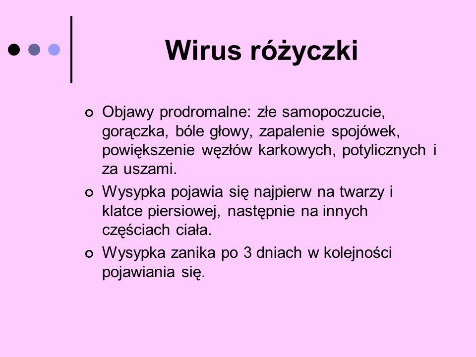 Wirus różyczki Objawy prodromalne: złe samopoczucie, gorączka, bóle głowy, zapalenie spojówek, powiększenie węzłów karkowych, potylicznych i za uszami