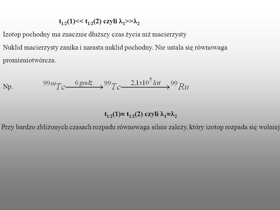 t 1/2 (1) > 2 Izotop pochodny ma znacznie dłuższy czas życia niż macierzysty Nuklid macierzysty zanika i narasta nuklid pochodny. Nie ustala się równo