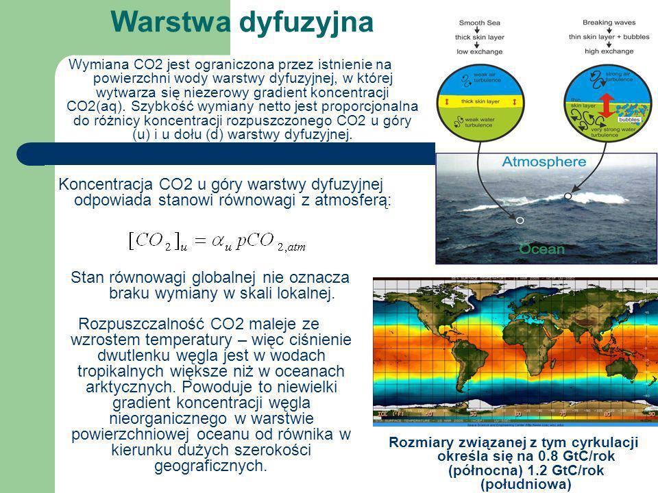 Warstwa dyfuzyjna Wymiana CO2 jest ograniczona przez istnienie na powierzchni wody warstwy dyfuzyjnej, w której wytwarza się niezerowy gradient koncen
