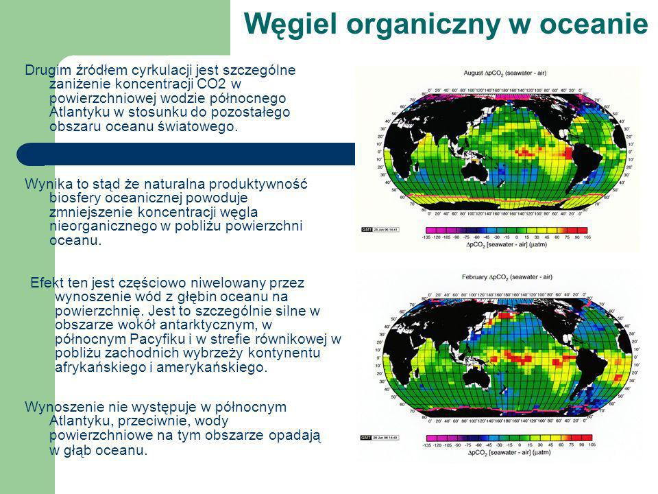 Węgiel organiczny w oceanie Drugim źródłem cyrkulacji jest szczególne zaniżenie koncentracji CO2 w powierzchniowej wodzie północnego Atlantyku w stosu