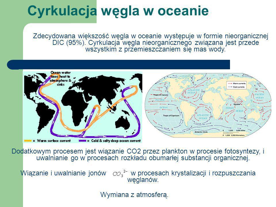 Wiązanie i uwalnianie jonów w procesach krystalizacji i rozpuszczania węglanów. Cyrkulacja węgla w oceanie Zdecydowana większość węgla w oceanie wystę