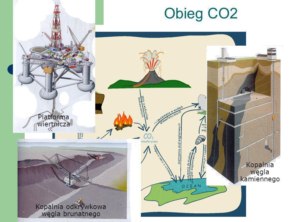 Obieg CO2 Kopalnia odkrywkowa węgla brunatnego Kopalnia węgla kamiennego Platforma wiertnicza