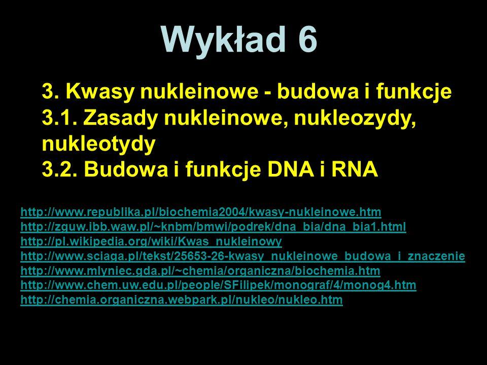 Wykład 6 3. Kwasy nukleinowe - budowa i funkcje 3.1. Zasady nukleinowe, nukleozydy, nukleotydy 3.2. Budowa i funkcje DNA i RNA http://www.republika.pl