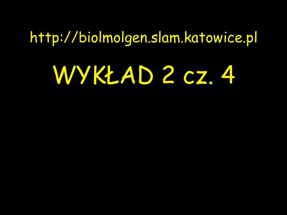 Kryńska B., et al.
