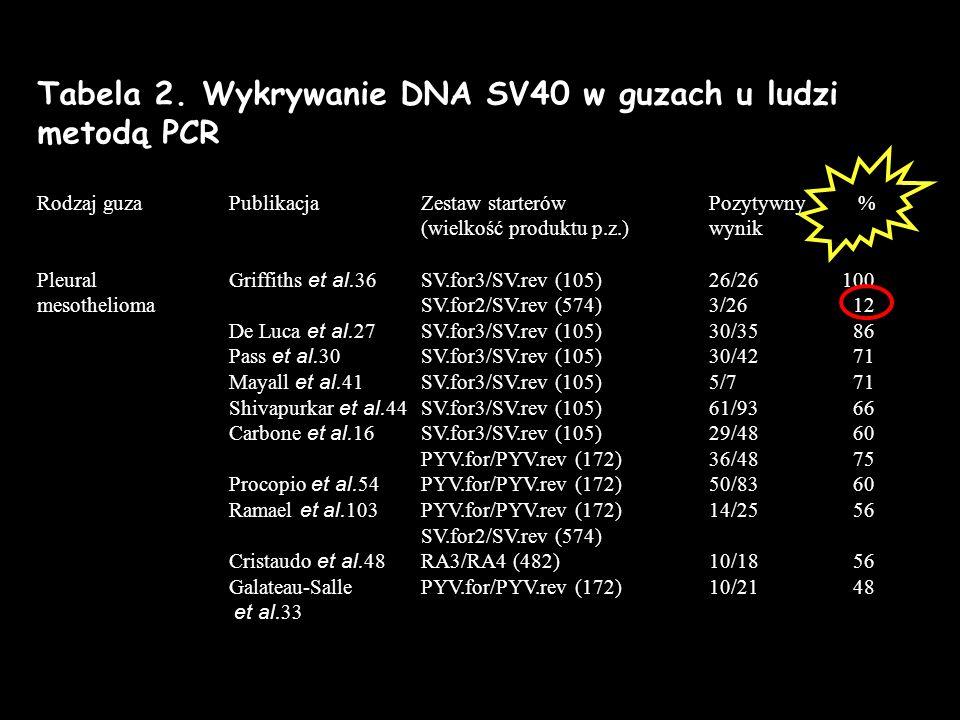 Tabela 2. Wykrywanie DNA SV40 w guzach u ludzi metodą PCR Rodzaj guza PublikacjaZestaw starterów Pozytywny % (wielkość produktu p.z.)wynik PleuralGrif