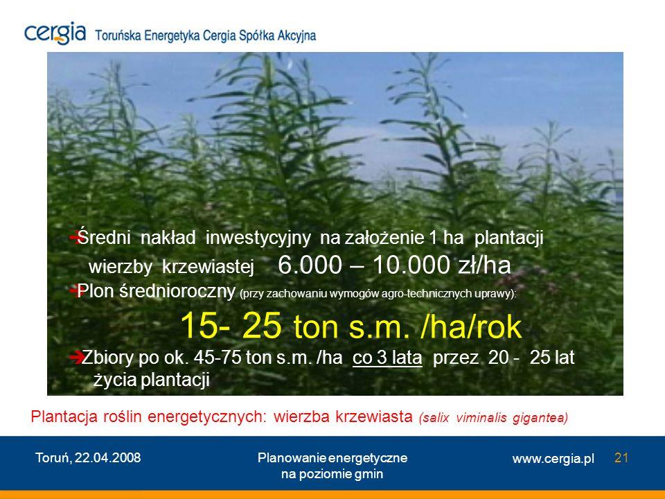 www.cergia.pl Toruń, 22.04.2008Planowanie energetyczne na poziomie gmin 21 Plantacja roślin energetycznych: wierzba krzewiasta (salix viminalis gigant