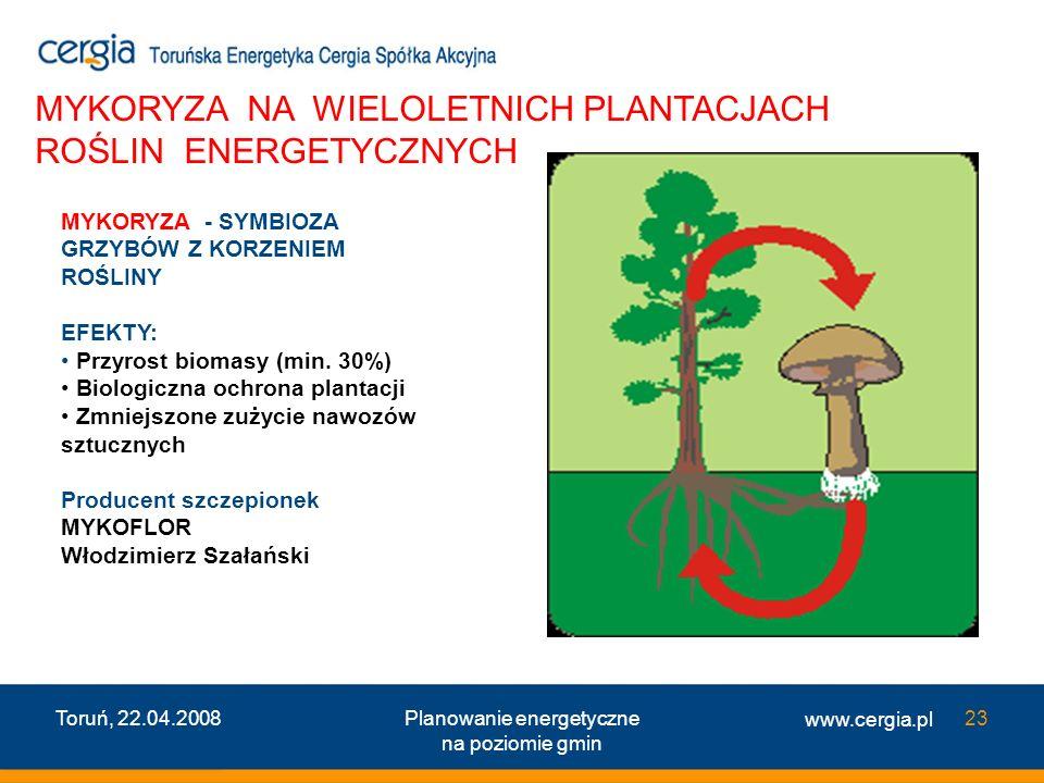 www.cergia.pl Toruń, 22.04.2008Planowanie energetyczne na poziomie gmin 23 MYKORYZA NA WIELOLETNICH PLANTACJACH ROŚLIN ENERGETYCZNYCH MYKORYZA - SYMBI