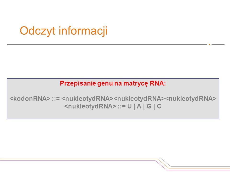 Przepisanie genu na matrycę RNA: ::= ::= U | A | G | C Odczyt informacji