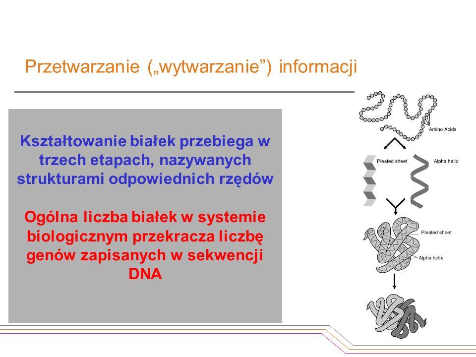 Kształtowanie białek przebiega w trzech etapach, nazywanych strukturami odpowiednich rzędów Ogólna liczba białek w systemie biologicznym przekracza li