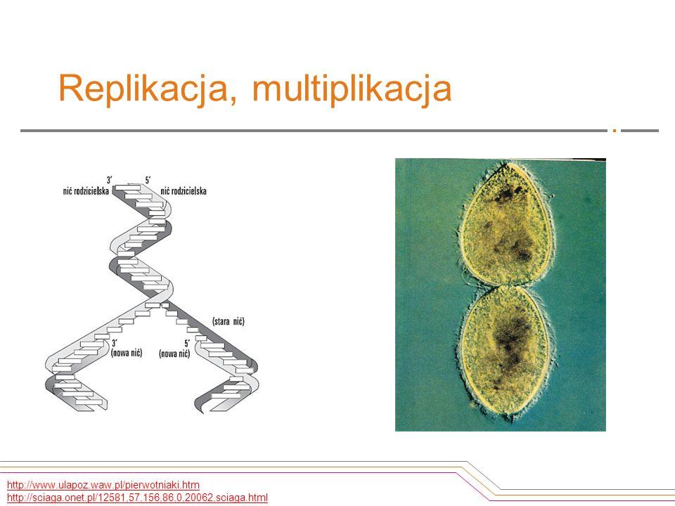 Replikacja, multiplikacja http://www.ulapoz.waw.pl/pierwotniaki.htm http://sciaga.onet.pl/12581,57,156,86,0,20062,sciaga.html