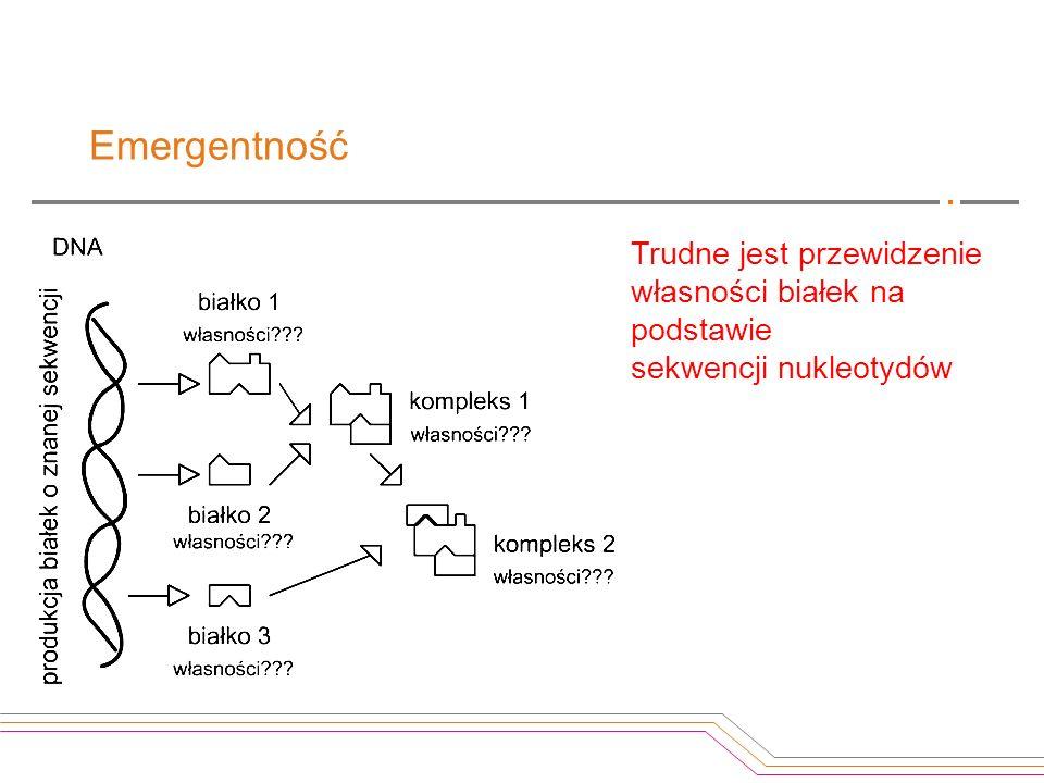 Emergentność Trudne jest przewidzenie własności białek na podstawie sekwencji nukleotydów